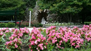 Grotto with Begonias